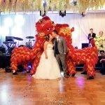 Wedding lions kissing with bridge & groom