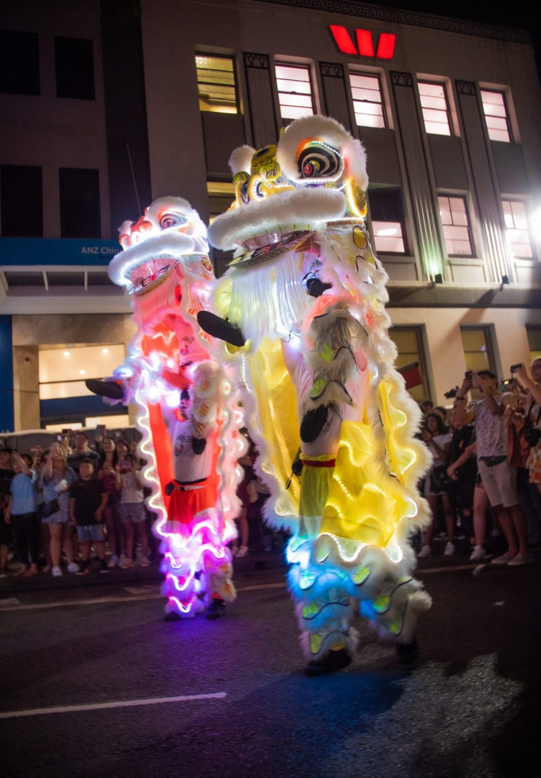 twin LED lion dance chinese new year