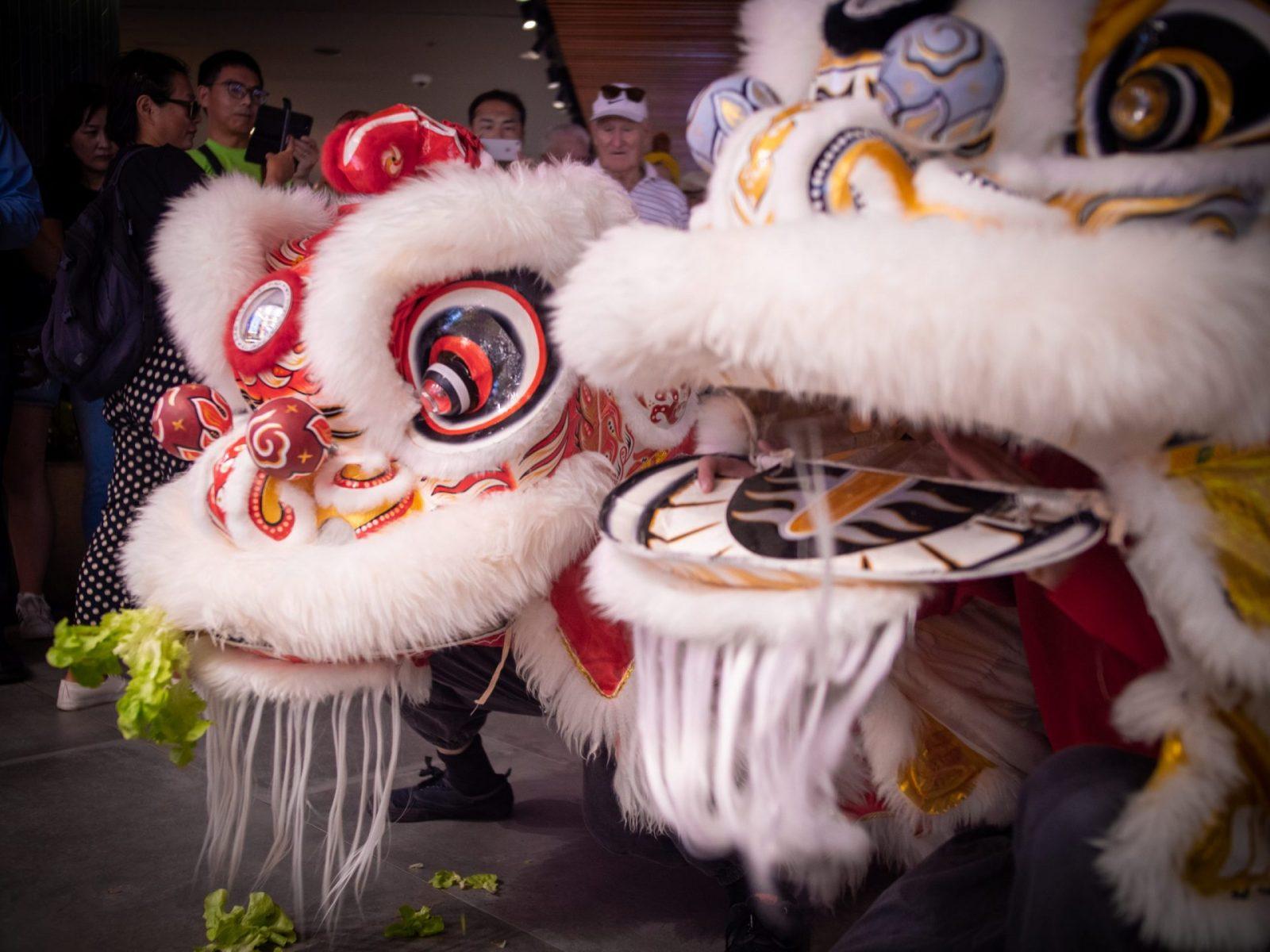 lion dance market city cai qing