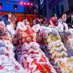 lion dance eyedotting ceremony city of sydney chinese new year 2020